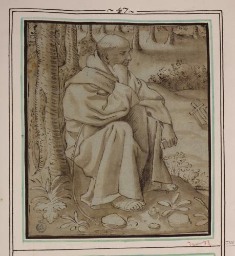 Estudio de franciscano sentado en el bosque