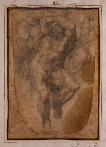 Estudio de desnudo masculino del