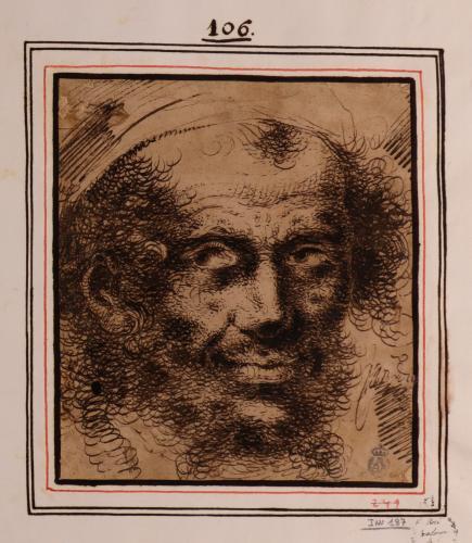 Estudio de cabeza de hombre barbado