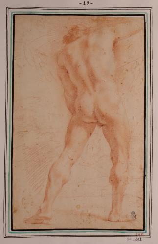 Estudio de modelo masculino desnudo de pie de espaldas