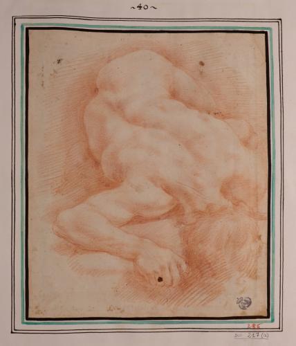 Estudio de modelo masculino desnudo tendido boca abajo en escorzo