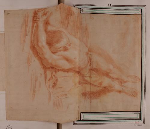 Estudio de modelo masculino desnudo tendido boca arriba en escorzo