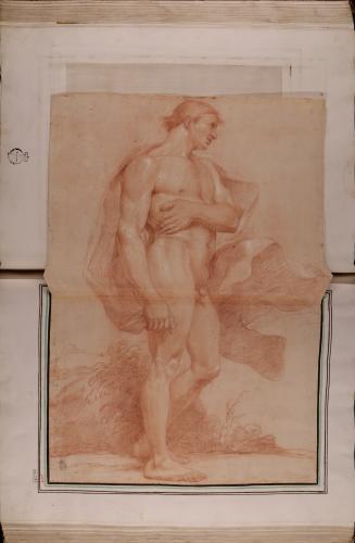 Estudio de modelo masculino desnudo de perfil de pie hacia la derecha