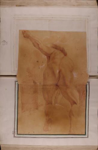 Estudio de modelo masculino desnudo de espaldas