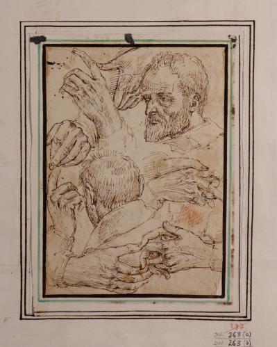 Estudios de cabezas y manos