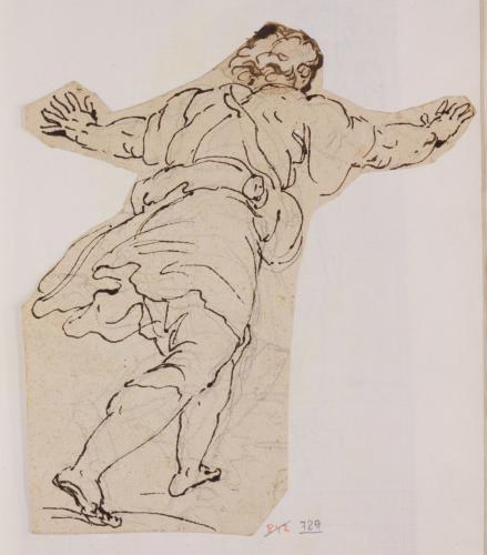 Estudio de figura masculina de corriendo de espaldas con los brazos abiertos