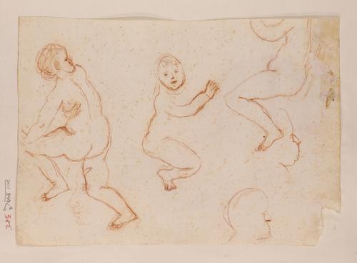 Varios estudios de niños desnudos