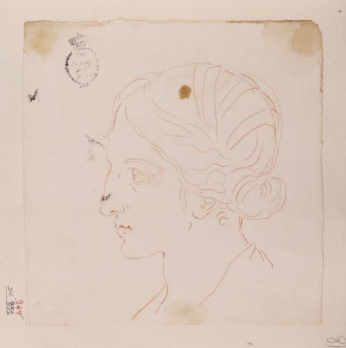 Estudio de cabeza femenina de perfil