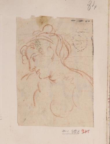 Estudio de cabeza femenina de perfil hacia la izquierda