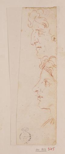 Dos estudios de cabezas masculinas de perfil hacia la izquierda