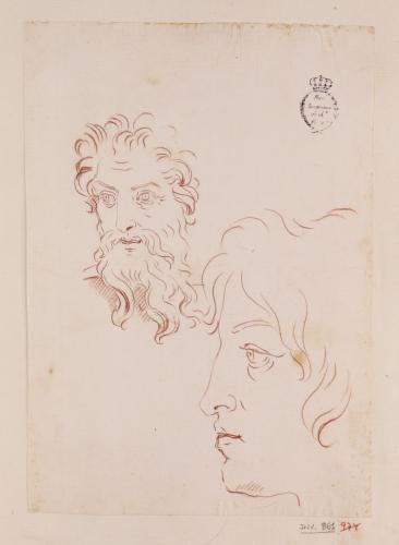 Estudio de cabeza masculina barbada y de perfil de joven