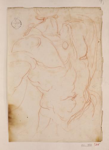 Apunte de torso masculino con pectorales