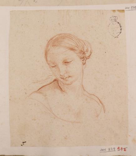 Estudio de cabeza de mujer con el pelo recogido, ligeramente torsionada, mirando hacia abajo