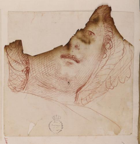 Estudio de cabeza femenina