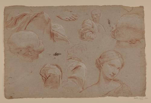 Estudios de cabeza y busto femenino, dos cabezas infantiles, pies y paños