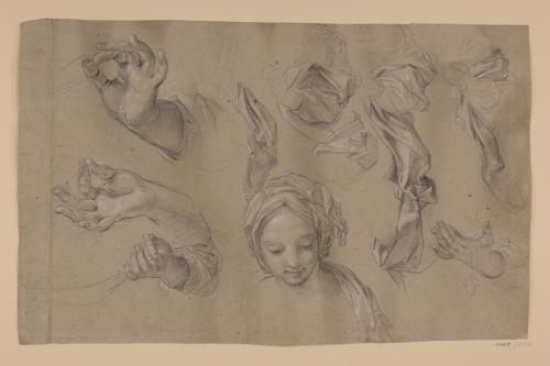 Estudios de cabeza femenina, brazos y paños