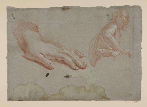 Estudio de un ángel joven y mano