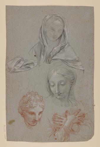 Estudios de cabezas femeninas, cabeza masculina, manos entrecruzadas sobre el pecho y paño