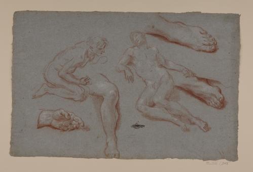 Estudio de desnudos masculinos, pierna, mano y pies