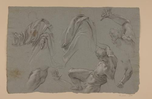 Estudios de desnudos masculinos, brazo, pierna y paños