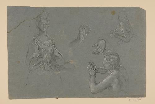 Estudios de media figura femenina, dos torsos juveniles y manos