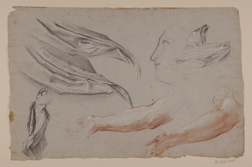 Estudio de paños, brazos, perfil femenino