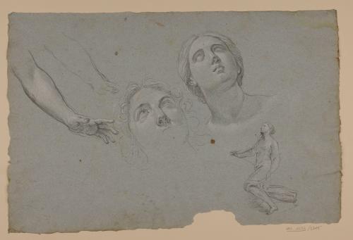 Estudio de cabezas y figura femenina, brazos