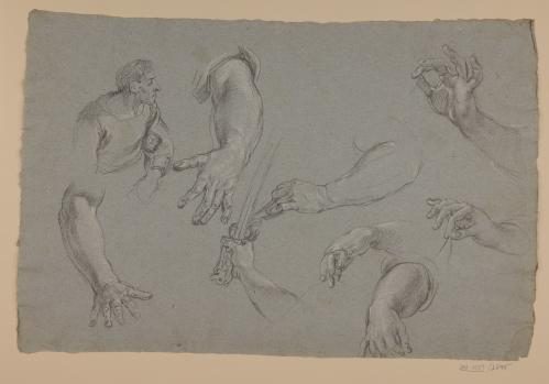 Estudio de torsos y brazos masculinos