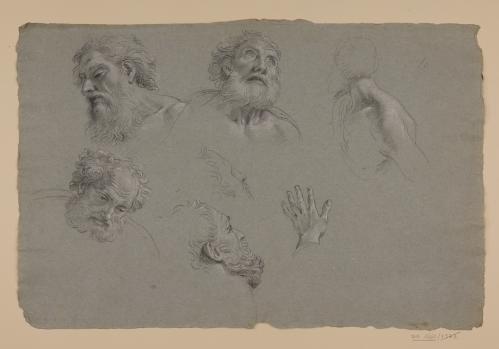 Estudio de cabeza de anciano barbado, mano y hombro