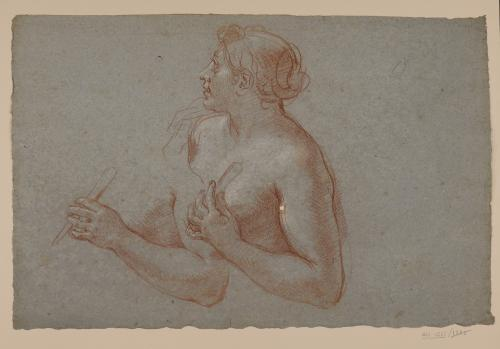 Estudio de busto femenino desnudo hacia la izquierda y brazo