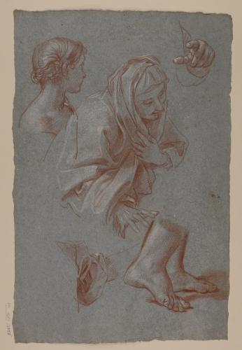 Estudios de busto femenino con manto, busto de una joven, piernas, paño y mano