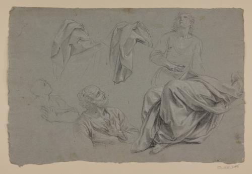 Estudio de bustos masculinos y paños de figura sentada