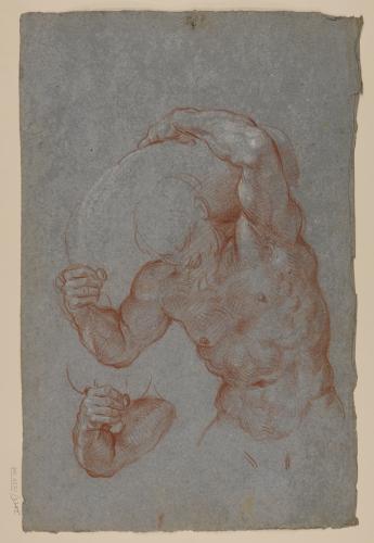 Estudio de modelo masculino desnudo con un saco sobre los hombros y de uno de sus brazos
