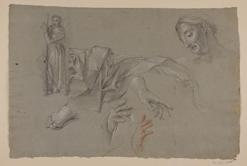 Estudio de figura de monje, cabeza femenina, manos, pie y paño