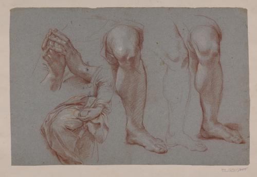 Estudio de pierna, manos y paños