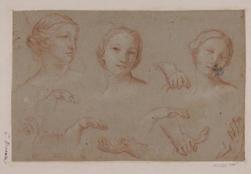 Estudios de cabezas y manos femeninas