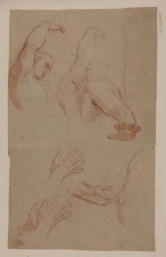 Estudio de busto, brazos y manos masculinos