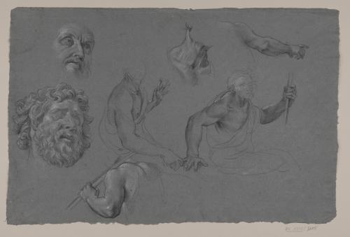 Estudio de torso, brazos, cabeza de anciano, cabeza del Laoconte? y figuras masculinas sentadas