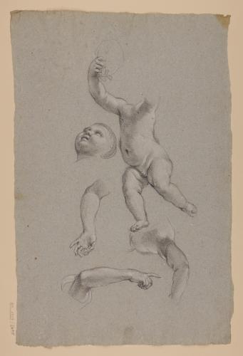 Estudio de desnudos infantiles