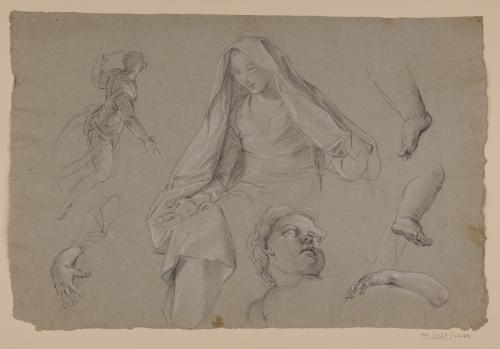 Estudio de figura femenina, masculina, cabeza y piernas infantiles