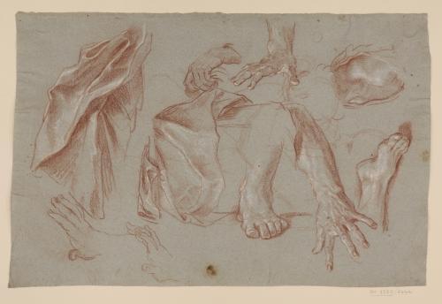 Estudios de paños, pies, manos y hombro masculinos