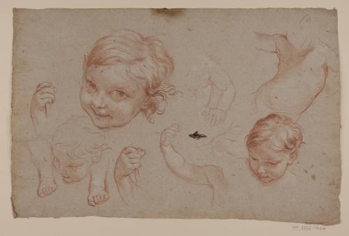 Estudio de cabezas, manos y pies de niño