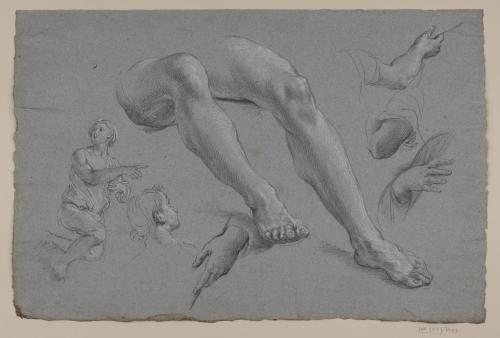 Estudios de figura arrodillada, cabeza de perfil, piernas, brazo y manos