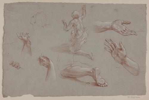 Estudio de figura arrodillada, pierna, manos y ligero apunte de cabeza