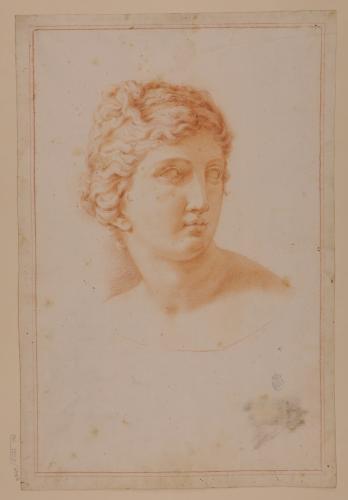 Estudio de cabeza de la Venus Medici