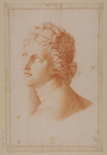 Estudio de la cabeza de la Venus Medici