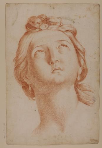 Estudio de cabeza femenina mirando hacia arriba