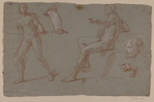 Estudio de dos figuras masculinas desnudas, cabeza barbada, brazo y mano