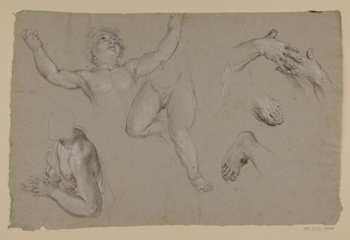 Estudio de torso masculino, desnudos infantiles, manos y pies