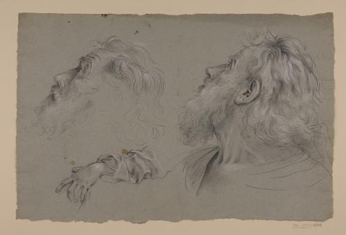 Estudio de cabeza barbada mirando hacia arriba y de brazo izquierdo con ropajes